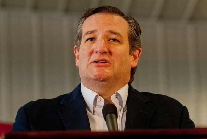 Ted Cruz Responds After Being Accused of