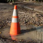 Man Plants Tree in Road After Pothole Frustrations